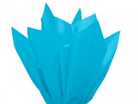100 x Turquoise Acid Free Tissue Packing Paper Sheets Gift Party Clothes Wrap